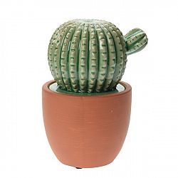 Keramický kaktus v kvetináči Veracruz